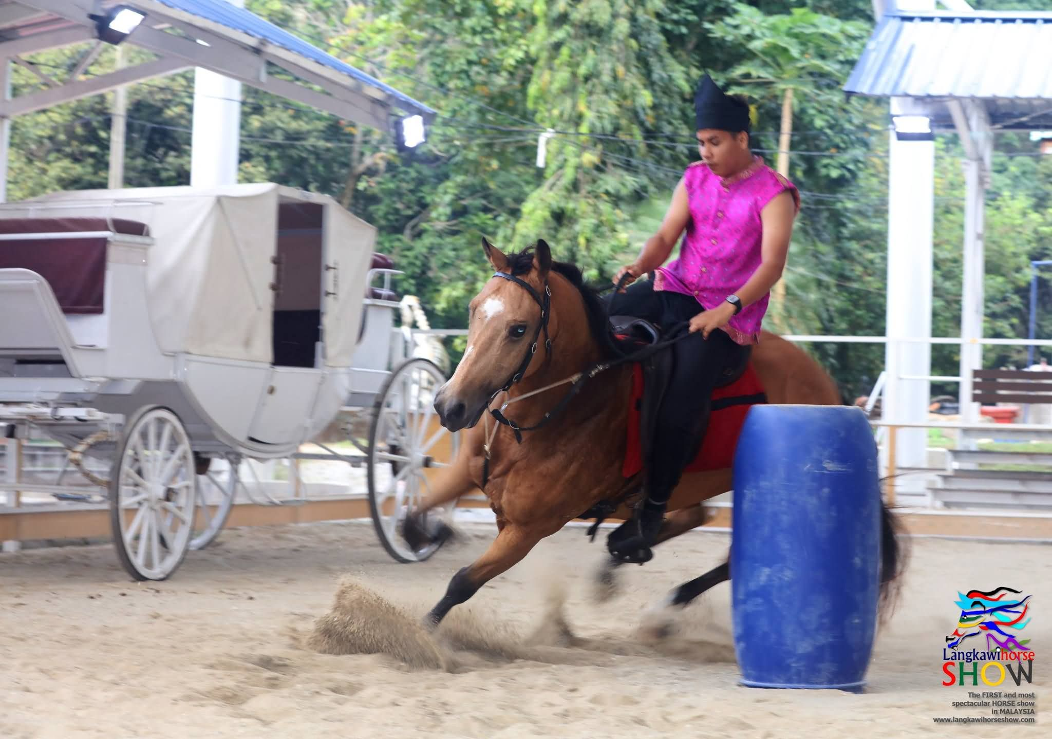 Barrel Racing (ii)-langkawihorses